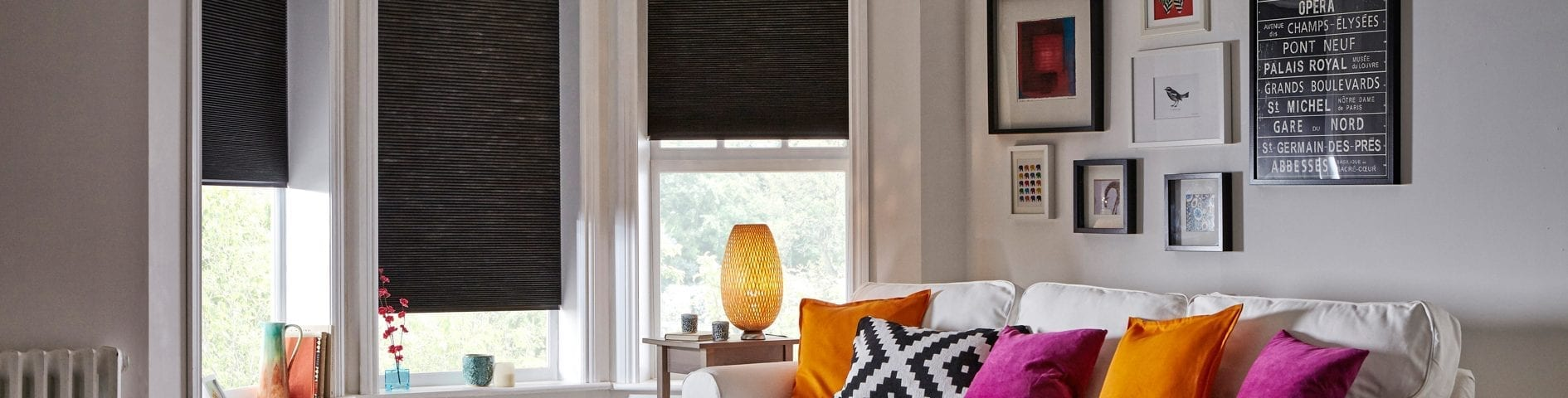 Blackout Blinds from Insignia Blinds